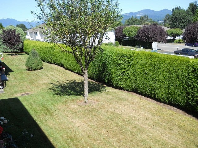 # 70 32959 GEORGE FERGUSON WY - Central Abbotsford Townhouse for sale, 2 Bedrooms (F1301496) #9